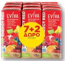 EVIVA ΧΥΜΟΣ 9x250ml